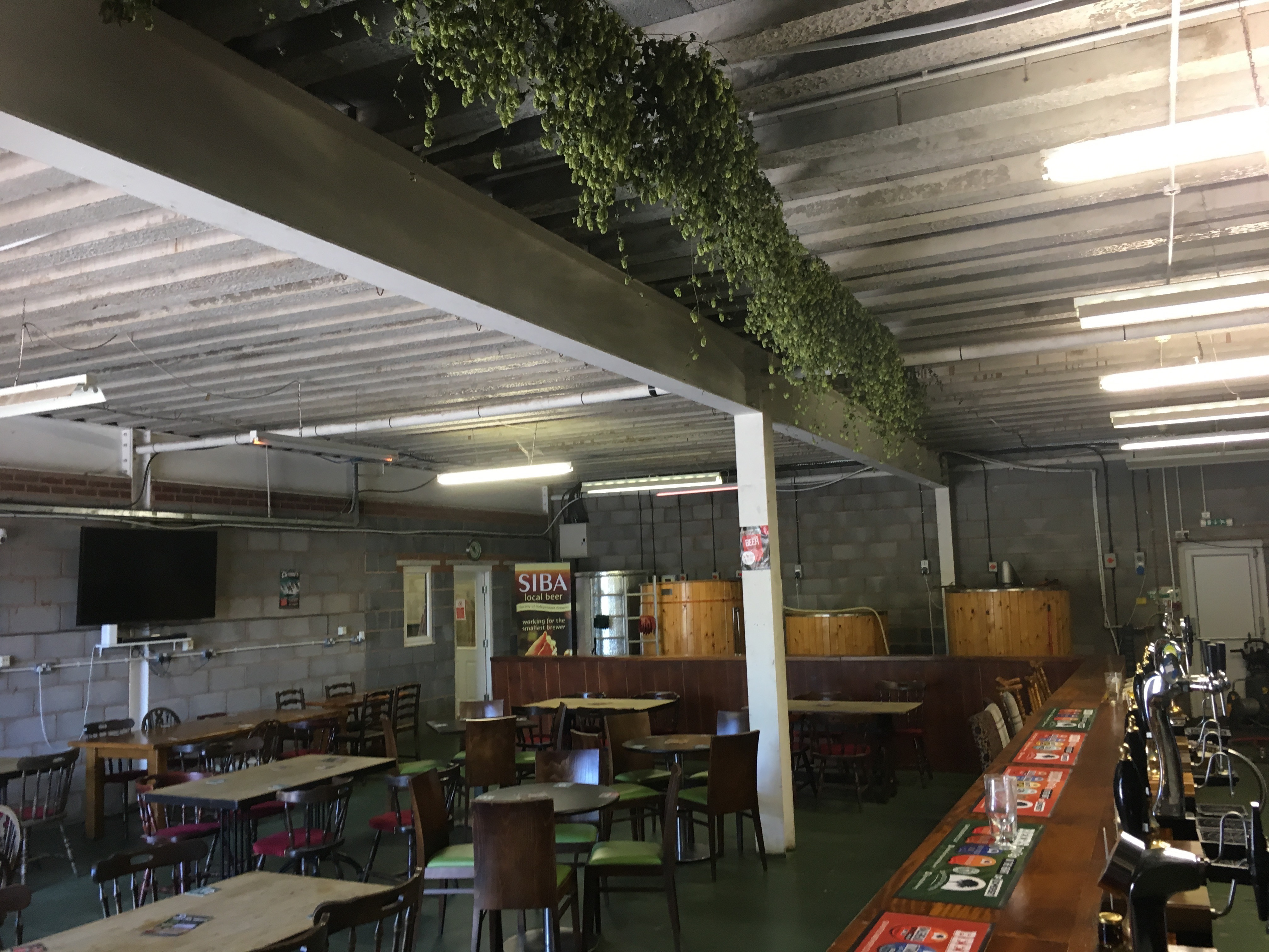 Photo of hop bines decorating Quantock Brewery's bar